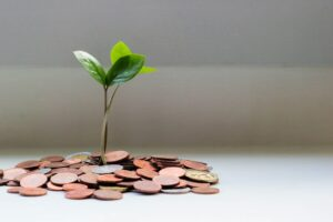 A plant grows up from a pile of pennies